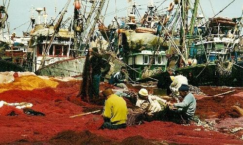 """Résultat de recherche d'images pour """"Maroc-UE: Nouvel accord de pêche en préparation"""""""