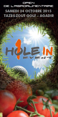 hole in 1